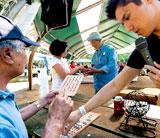Nikkei Community Picnic 2013