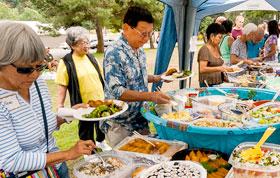 Nikkei Community Picnic