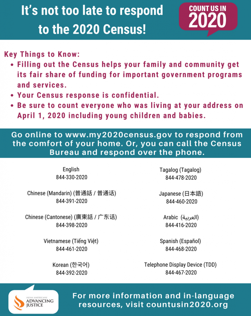 Count us in 2020 flyer with information from Asian Americans Advancing Justice